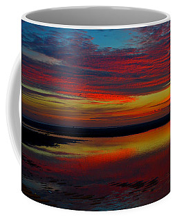 Fireworks From Nature Coffee Mug by Dianne Cowen