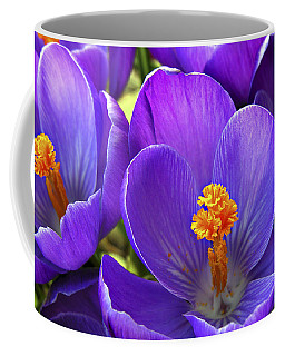 First Crocus Coffee Mug