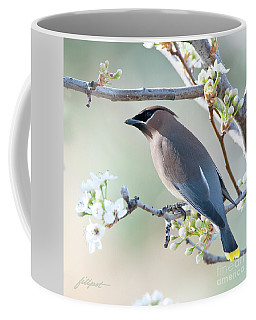 First Day Of Spring Coffee Mug