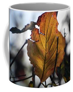 First Fall Leaf 2017 Coffee Mug
