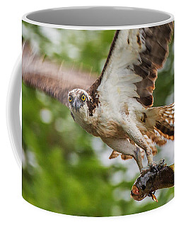 First Flight Last Flight Coffee Mug