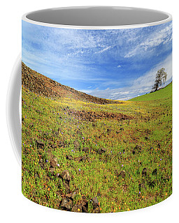 Coffee Mug featuring the photograph First Flowers On North Table Mountain by James Eddy