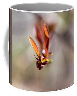 First Leaves Coffee Mug