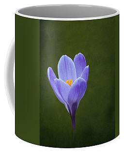 First Sign Of Spring Coffee Mug