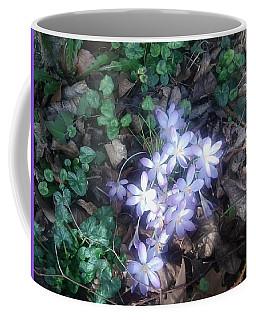 First Spring Treasures 2017 Coffee Mug