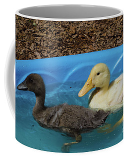 Coffee Mug featuring the photograph First Swimming Lesson by Donna Brown