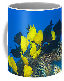 Fish Cleaning Turtle Coffee Mug