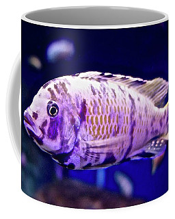 Calico Goldfish Coffee Mug