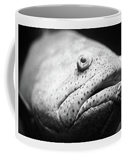 Fish Face Coffee Mug