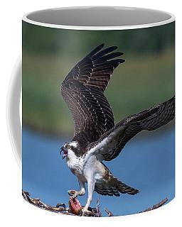 Fish For The Osprey Coffee Mug