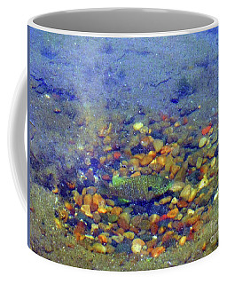Fish Spawning Coffee Mug