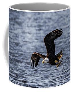 Fish To Go Coffee Mug by Ray Congrove