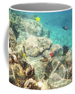 Coffee Mug featuring the photograph Colorful Fish by Karen Nicholson