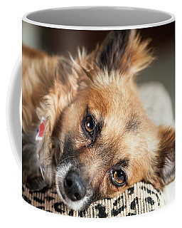 Fisher Coffee Mug