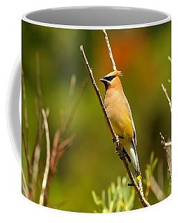 Fishercap Cedar Waxwing Coffee Mug