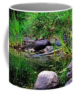 Fishing Pond Coffee Mug