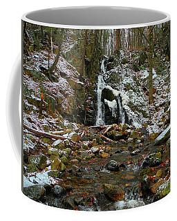Fitzgerald Falls Is Along The Appalachian Trail 6 Coffee Mug by Raymond Salani III