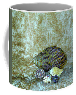Five Glistered Shells Coffee Mug