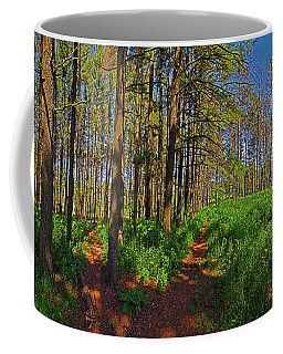 Five Paths Coffee Mug