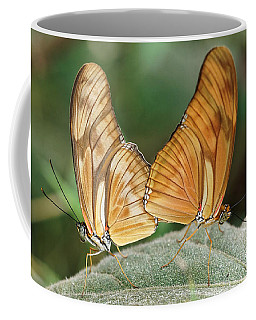 Coffee Mug featuring the photograph Flambeau Butterfly - 2 by Paul Gulliver