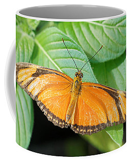 Coffee Mug featuring the photograph Flambeau Butterfly by Paul Gulliver