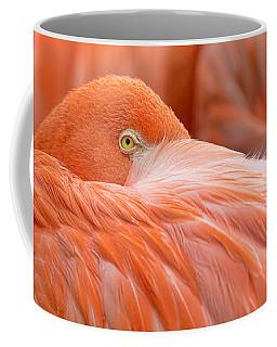Flamboyant Flamingo Coffee Mug