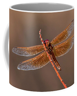 Coffee Mug featuring the photograph Flame Skimmer Close Up by Dan McManus