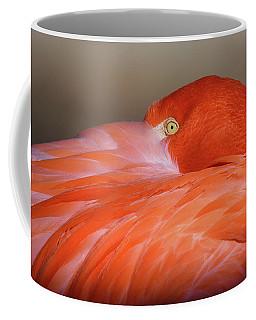 Flamingo Coffee Mug by Michael Hubley