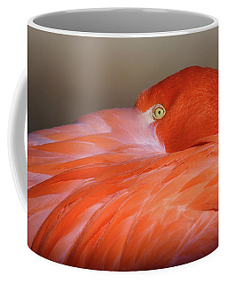 Coffee Mug featuring the photograph Flamingo by Michael Hubley