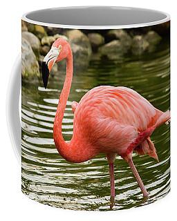 Flamingo Wades Coffee Mug