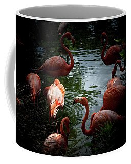 Coffee Mug featuring the photograph Flamingos by Eric Christopher Jackson