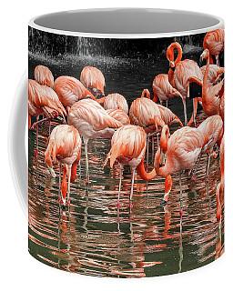 Flamingo Looking For Food Coffee Mug