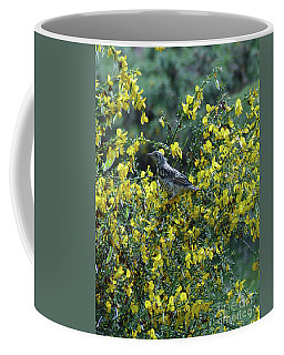 Coffee Mug featuring the photograph Fledgling Mistle Thrush by Phil Banks