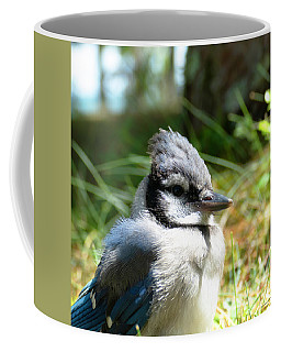 Fledgling Coffee Mug