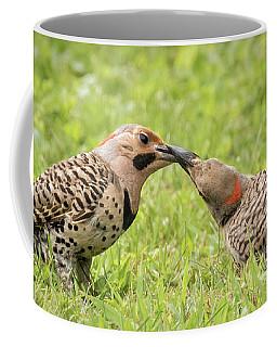 Flicker Feeding Coffee Mug