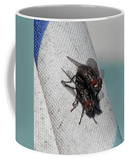 Coffee Mug featuring the photograph Flies Mating Position by Belinda Lee