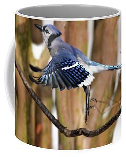 Flight Of The Blue Jay Coffee Mug