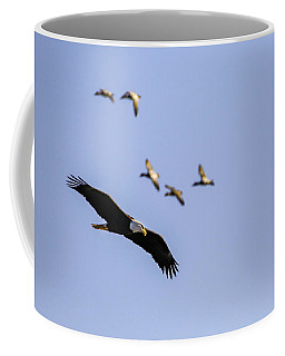 Flight Pattern Coffee Mug