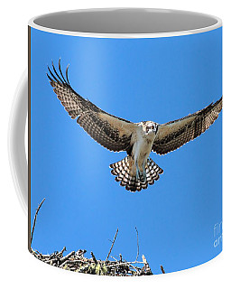 Coffee Mug featuring the photograph Flight Practice Over The Nest by Debbie Stahre