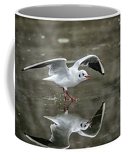 Flight Reflection  Coffee Mug