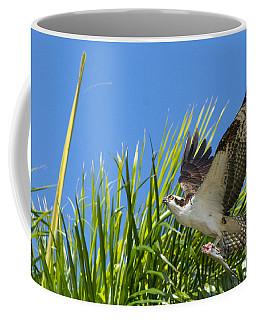 Flight Through The Palms Coffee Mug