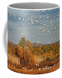 Flight Wonders Coffee Mug