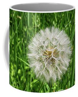 Fll-3 Coffee Mug