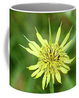 Fll-4 Coffee Mug