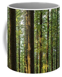 Multnomah Wahkeena Loop Coffee Mug