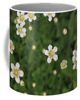 Coffee Mug featuring the photograph Floating In Green by Shari Jardina