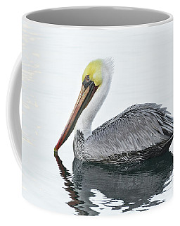 Floating Pelican Coffee Mug