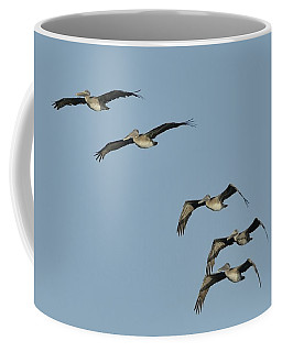 Flock Of 5 Pelicans  Coffee Mug