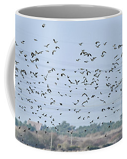 Flock Of Beautiful Migratory Lapwing Birds In Clear Winter Sky Coffee Mug
