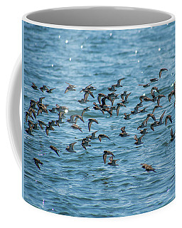Coffee Mug featuring the photograph Flock Of Birds by Trace Kittrell